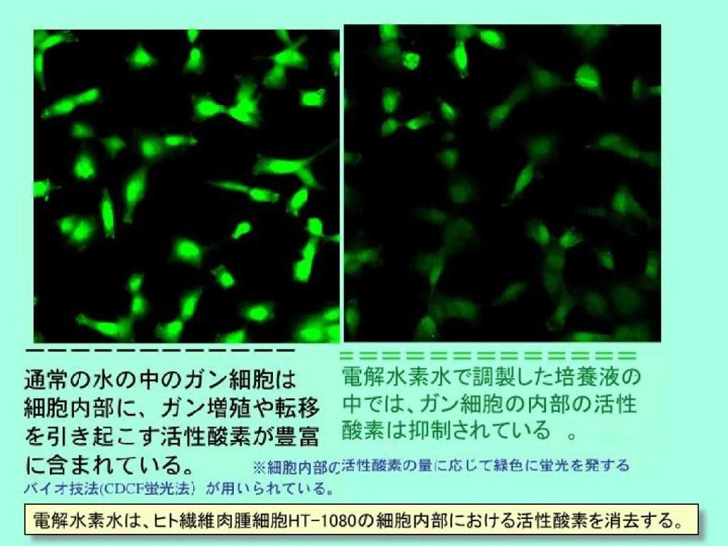 ガン細胞電解水素水