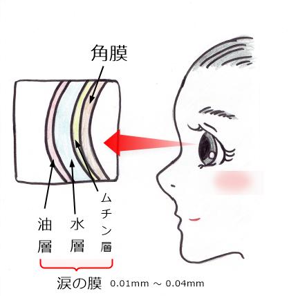 涙の膜(ムチン層)